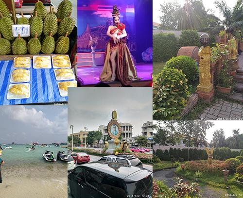 【图】情迷芭堤雅,曼谷人妖秀,三军行春游的泰国之旅华丽落幕!